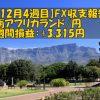 【12月4週目】南アフリカランド/円のFX収支報告(+3,315円)